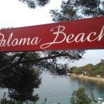 Photo of Paloma Beach