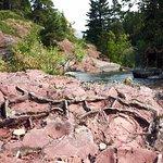 1400 million old mud cracks in a red argillite along the Blakiston Creek