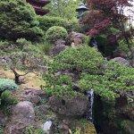 Foto de Japanese Tea Garden