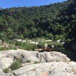 Wilderness National Park Foto