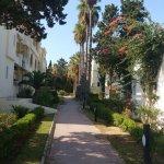 Photo of Delfino Beach Resort & Spa
