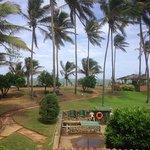 Foto de Palm Village Hotel