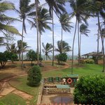 Photo of Palm Village Hotel