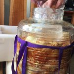 Anthes Ferments