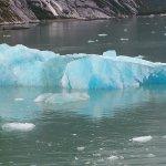 Iceberg near the fjord
