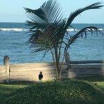 Foto de Saint Tropez Praia Hotel