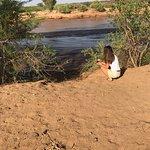 Photo de Lion King Bush Camp