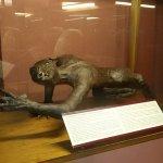 Photo of Museo Lara