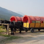 Covered wagon for trail ride to cowboy cookout