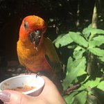 Loved feeding the birds