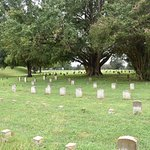 Cemetery With Entrance Located Across From USS Cairo.