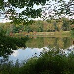 Beartown Lakes Reservation