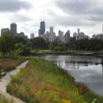 There is a wonderful prairie/marsh area across the street from the hotel in the Lincoln Park.