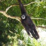 Φωτογραφία: Oakland Zoo