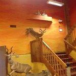 Foto de Kings Inn Cody Hotel