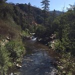 Photo of Stanislaus National Forest