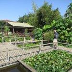 Photo de Jardins des Martels