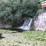 Photo of Loro Parque