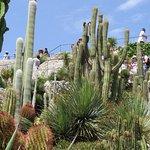 Botanical Garden Eze