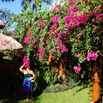 lovely grounds, very colorful