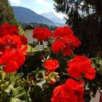Photo of Alpine Classic Hotel Leysin