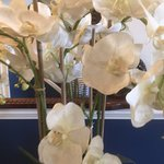 Reception - more dusty silk flowers