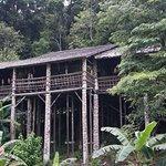Orang Ulu house