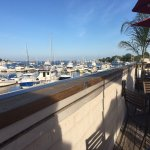 Drinks with a view at Michael's Harborside
