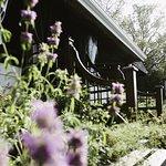 Fines herbes & fleurs comestibles