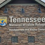 Tennessee National Wildlife Refuge