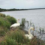 Photo of Lake Utonai