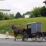 Photo of The Amish Village