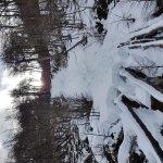 Foto de Glacier Martial