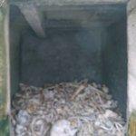 Les restes de nos 130 000 soldats non identifiés