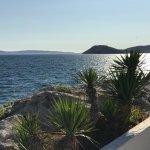Photo de Adriatic Graso