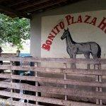 Photo of Bonito Plaza Hotel