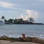 Zdjęcie Couples Tower Isle