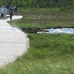 Boardwalk out to Western Brook Pond