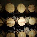 Oak barrels at Pillitteri Wine Estates