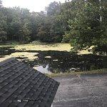 """""""lake"""" view"""