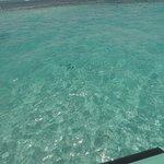 clear waters at the sandbar