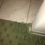 Multiple places in carpet was stained or unraveling. This is worse part