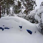 Where is the car door? - www.cradlehighlander.com.au