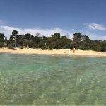 Photo of Spiaggia Pineta del Gelsomineto