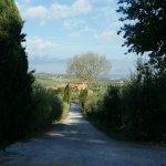 Photo of Villa Nottola