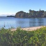 Collingwood beach Huskisson/Vincentia