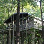 Tree House just opened Sept 2017