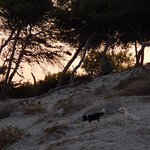 Photo of Spiaggia Alimini
