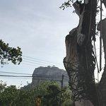 Photo de Sigiriya Village Hotel
