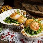Pan fried scallops, jicama, seaweed, shallots and garlic dressing